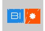 Webinar byDataVirtuality and OWOXBI