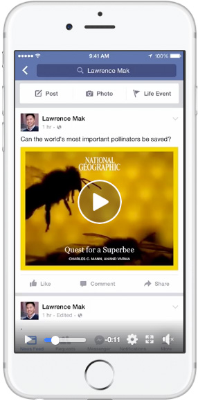 Facebook instant articles — single video